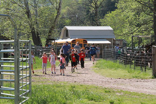 Field Trips at Crystal Creek Ranch