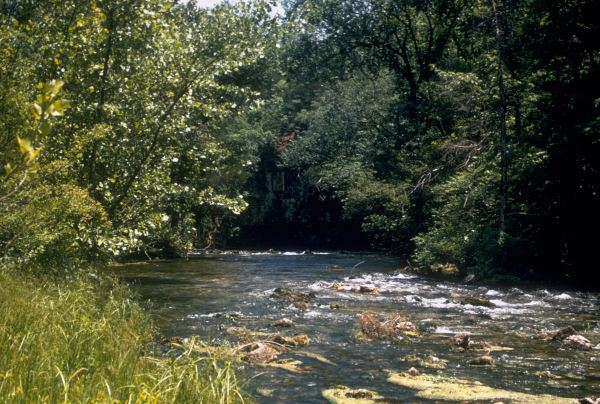 Running Waters of the Ozark National Scenic Riverways